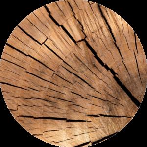 Photo d'une buche de bois